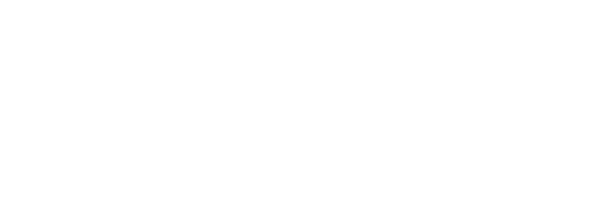 Lucid Pros